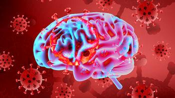 اثر تازه وخطرناک کرونا بر مغز انسان