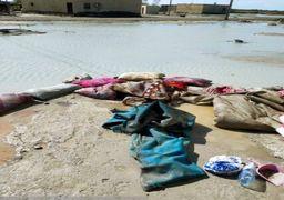 ۴۰ روستای سیستان وبلوچستان در محاصره سیل