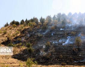 آتش به جان پارک جنگلی آبیدر سنندج افتاد+عکس