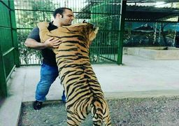 قهرمان ورزشی ایران در حال مبارزه با ببر! +عکس