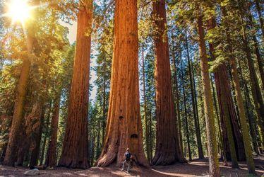 ۵۰ منظره حیرتانگیز از طبیعت ۵۰ ایالت آمریکا