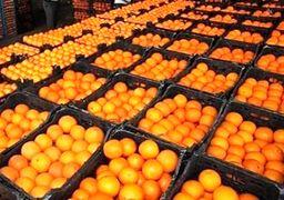 ۶۰۰هزار تن پرتقال ترکیه در راه ایران