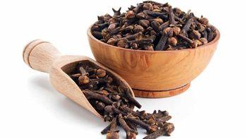 گیاهی که بهتر از آدامس بوی بد دهان را رفع میکند