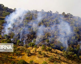 گزارش تصویری آتشسوزی جنگلهای خائیز