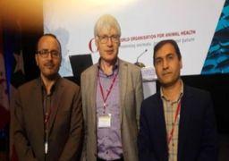 نروژ برای توسعه پرورش ماهی در قفس با ایران همکاری میکند