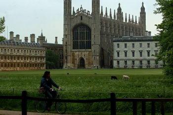 سوالات عجیبی که برای ورود به این دانشگاه معروف باید پاسخ دهید/یک سیب زمینی را توصیف کنید /موش بودید چه می کردید؟
