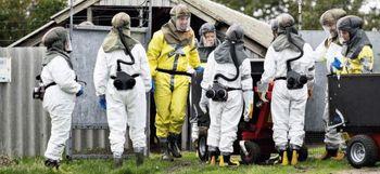 نسل کشی ۱۷ میلیون سمور در دانمارک