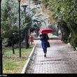 بارش برف و باران در ۳۰ استان/ کاهش محسوس دما