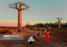 گزارش تصویری از ماداگاسکار واقعی