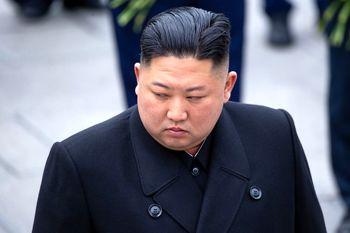 دستور  رهبر کره شمالی به مردم ؛  لاکپشت بخورید!