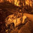شهرهای ایالت کالیفرنیا در صدر آلودهترین شهرهای جهان