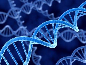 هشدار در مورد خطر آزمایش های دی ان ای