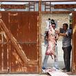 هشدار وزارت بهداشت درباره ذبح دام در عید قربان/ شباهت علائم کرونا و تب کریمه کنگو