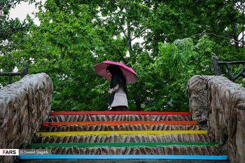 پیشبینی باران و وزش باد شدید ۵ روزه در ۱۵ استان