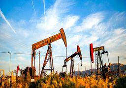 افزایش بهای نفت در میان الزام کاهش تولید