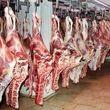 قیمت گوشت قرمز دامداران کاهش یافت