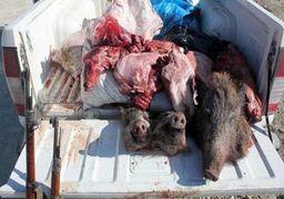 دستگیری باند خرید و فروش گوشت خوک