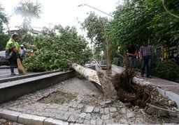 طوفان تهران جان یک نفر را گرفت