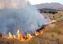 مهار آتشسوزی در مراتع دماوند با وسعت 50 هکتار
