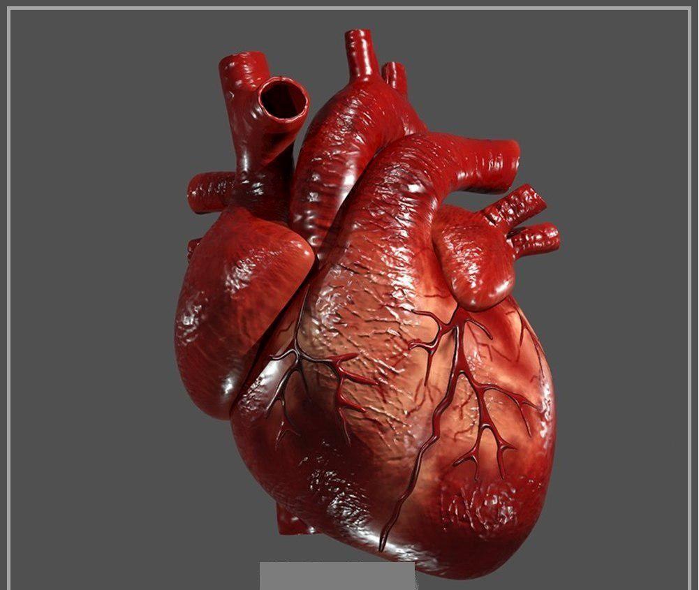 درمان بیماری تپش قلب