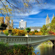 شهری که متوسط قیمت مسکن در آن ۲ میلیون دلار است