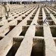 تجارت چند صد میلیونی با قبر در روزهای کرونایی