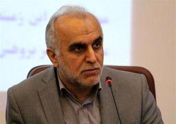 وزیر اقتصاد مطرح کرد؛ فراخوان بسیج عقلی برای مقابله با فرار مالیاتی