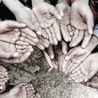 پیشرفت فیزیکی سامانه اطلاعاتی دولت برای ریشه کنی فقر به 90 درصد رسید