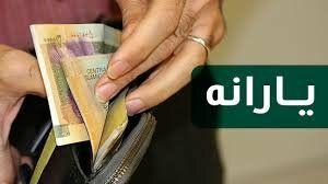 پرداخت یارانه 120 هزار تومانی خرید کالاهای اساسی در مجلس تصویب شد+ جزئیات