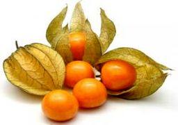 تولید یک میوه لاکچری در آذربایجان + عکس