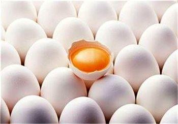 اثر درمانی خوردن زرده تخم مرغ عسلی