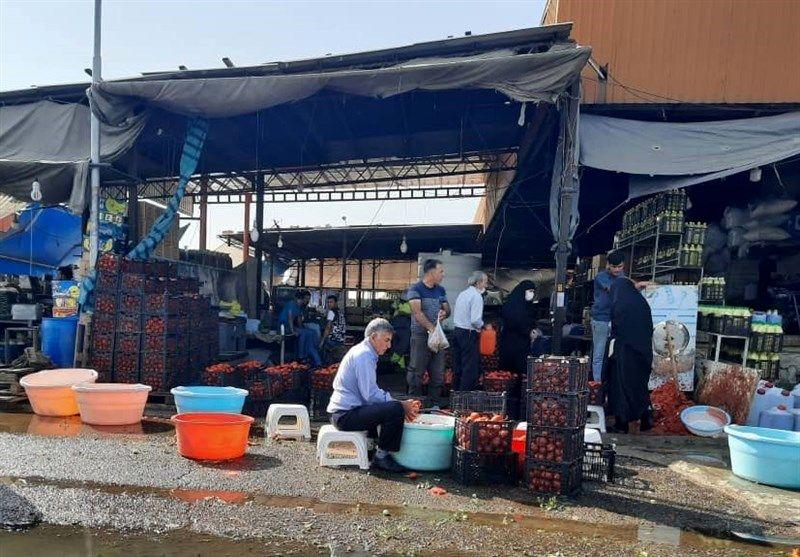 گزارش میدانی تسنیم| جولان ویروس کرونا در میدان مرکزی میوه تهران/ اینجا از بهداشت خبری نیست + تصاویر