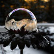 تصاویر باور نکردنی از حبابهای یخ زده